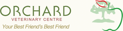 Orchard Veterinary Centre - Your best friend's best friend